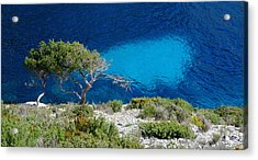 Pine Trees At Azure Waters Acrylic Print