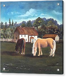 Cottage With Shetland Ponies Acrylic Print by Diane Daigle
