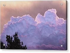 Cotton Candy Acrylic Print