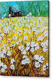 Cotton Fields Back Home Acrylic Print