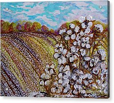 Cotton Fields In Autumn Acrylic Print by Eloise Schneider