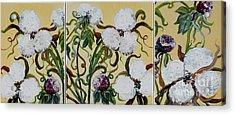 Cotton Triptych Acrylic Print by Eloise Schneider