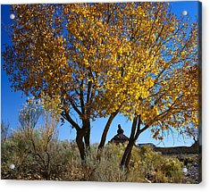 Cottonwood And Nipple Butte Acrylic Print