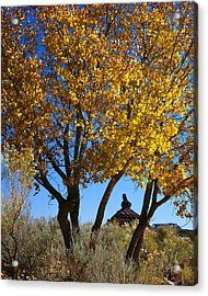 Cottonwood And Nipple Butte-v Acrylic Print