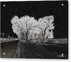 Cottonwood Frost Acrylic Print by Aliceann Carlton