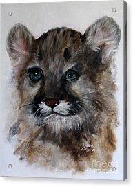 Antares - Cougar Cub Acrylic Print by Barbie Batson