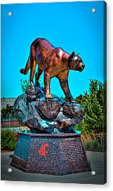 Cougar Pride Sculpture - Washington State University Acrylic Print by David Patterson
