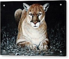 Acrylic Print featuring the painting Cougar Waiting by DiDi Higginbotham