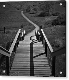 Coulee Stairs Acrylic Print by Donald S Hall