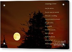 Counting Crows - Old Superstitious Nursery Rhyme Acrylic Print by Barbara Griffin