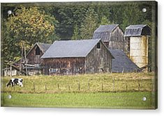 Acrylic Print featuring the painting Country Art - Rustic Old Barns With Cow In The Pasture by Jordan Blackstone