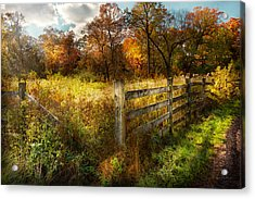 Country - Autumn Years  Acrylic Print by Mike Savad