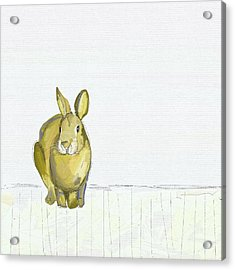 Country Bunny Acrylic Print