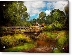 Country - Country Living Acrylic Print by Mike Savad