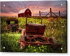 Country Cousins Acrylic Print by Debra and Dave Vanderlaan