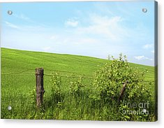 Country Fence With Flowers With Blue Sky Acrylic Print by Sandra Cunningham
