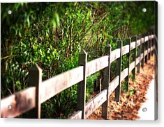 Country Green Acrylic Print