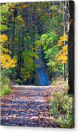 Country Lane Acrylic Print by Deb Kline