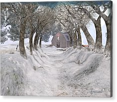 Country Lane In Winter Acrylic Print by Kylie Sabra