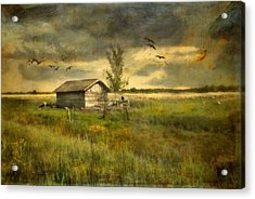 Country Life Acrylic Print by Annie Snel