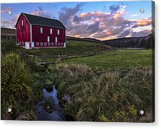 Country Life Acrylic Print by James Black