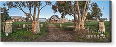 Country Life Acrylic Print by Shannon Rogers