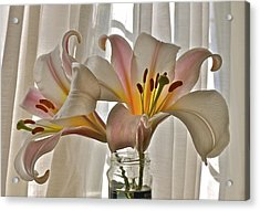 Country Lilies Acrylic Print by K L Kingston
