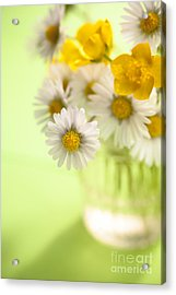 Country Posy Acrylic Print by Jan Bickerton
