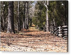 Country Road Acrylic Print by Arthur Warlick