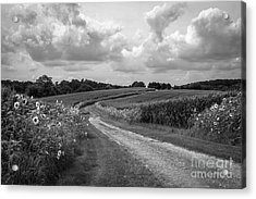 Country Road Acrylic Print by Chris Scroggins