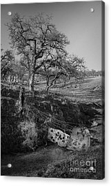 Country Road Acrylic Print by Dan Julien