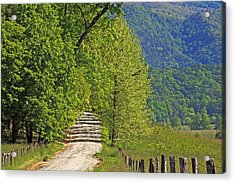 Acrylic Print featuring the photograph Country Road by Geraldine DeBoer