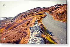 Country Road In Autumn Acrylic Print by Moreiso