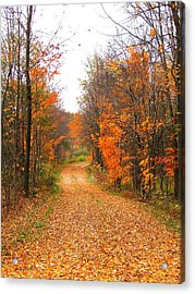 Country Road Acrylic Print by Judy  Waller
