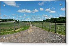Country Road Acrylic Print by Michelle Lenkner