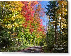 Country Road Ny Acrylic Print