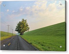 Country Roads Acrylic Print by Dan Sproul
