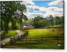 Country - The Pasture  Acrylic Print by Mike Savad