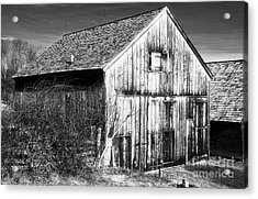 Country Time Acrylic Print by John Rizzuto