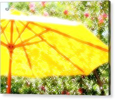 Country Umbrella Acrylic Print