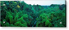 Countryside, Mauritius Island, Mauritius Acrylic Print
