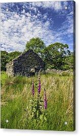 Countryside Ruin Acrylic Print by Ian Mitchell