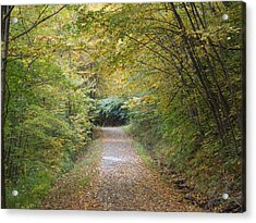 County Path Acrylic Print by Catherine Gagne