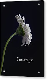 Courage Acrylic Print by Kim Andelkovic