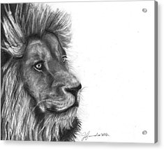 Acrylic Print featuring the drawing Courage Of A Lion by J Ferwerda