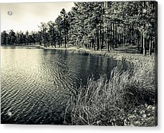 Acrylic Print featuring the photograph Cove by Greg Jackson