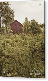 Covered Barn Acrylic Print by Margie Hurwich