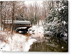 Covered In Snow Acrylic Print by Michelle Joseph-Long