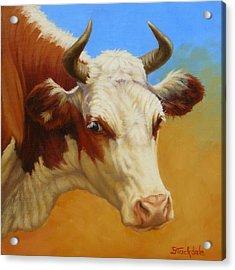Cow Face Acrylic Print