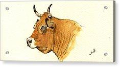 Cow Head Study Acrylic Print by Juan  Bosco